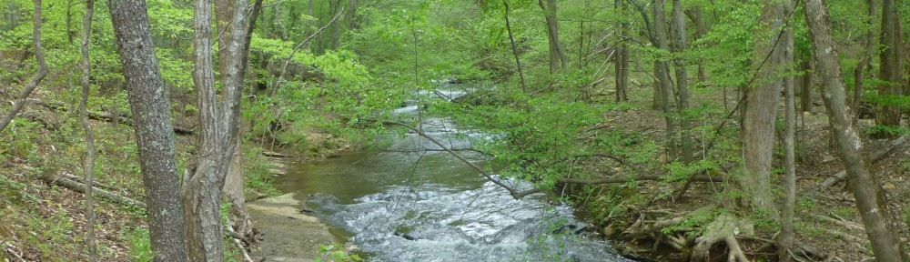 cropped-2013-04-creek