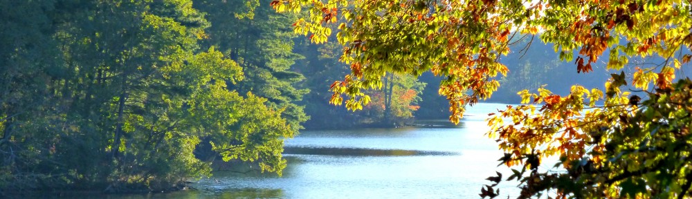 cropped-2013-1025-autumn-lake-view