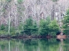 cropped-2013-0105-lake-tamarack