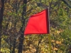 cropped-2013-11-flag-wind