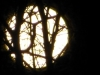 cropped-2013-1118-full-beaver-moon