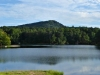 cropped-2016-0822-lake-tamarack-header-1000x288.jpg