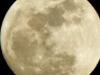 cropped-2017-0111-wolf-moon-header-1000x288.jpg