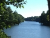cropped-2017-0628-lake-tamarack-header-1000x288.jpg