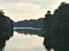 cropped-2017-0822-lake-tamarack-header-1000x288.jpg