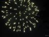 P1650618 2018 0704 fireworks.JPG