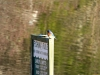 2014-0112-bluebird-fishing-rule-sign