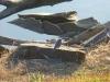 p1110356-2013-1027-bluebird-at-dam-3