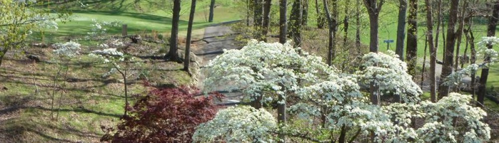 2012-0326-dogwoods-golf-course-header