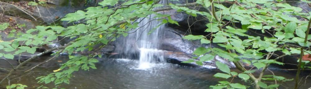2012-0916-stream-header-2