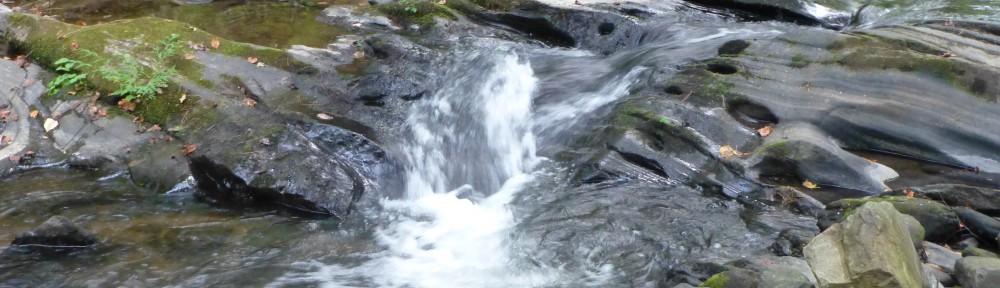 2012-0916-stream-header