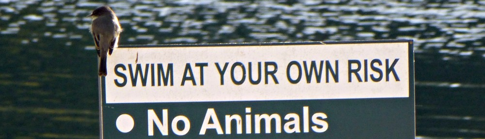 2012-1010-bird-no-animals-sign