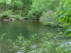 2012-0416-trail-pond-header