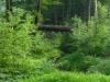 2012-0721-understory-header