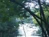 2012-0919-lake-tamarack-header