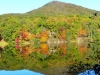 2012-1021-lake-tamarack-reflection-header