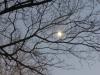 2012-1121-moon-header