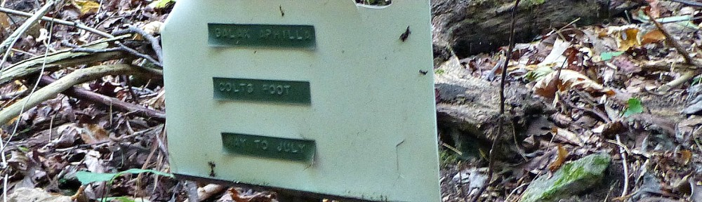 September 16, 2012 - an old plant identification sign