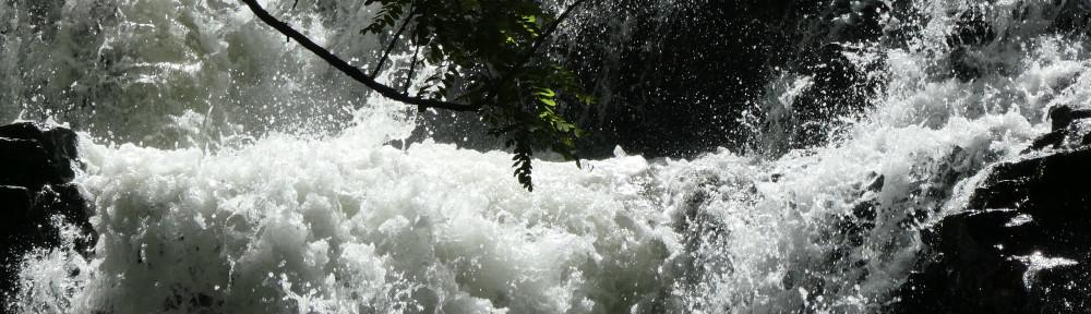 cropped-P1000614-2017-0507-spillway-falls.jpg