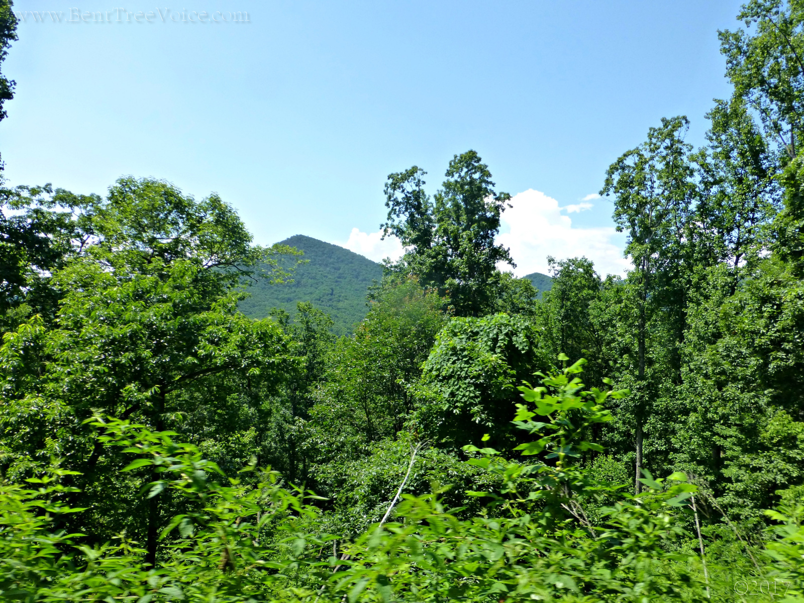 June 14, 2017 - view from Little Pine Mountain Road in Bent Tree