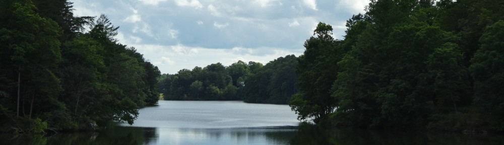 View of Lake Tamarack from the pavilion