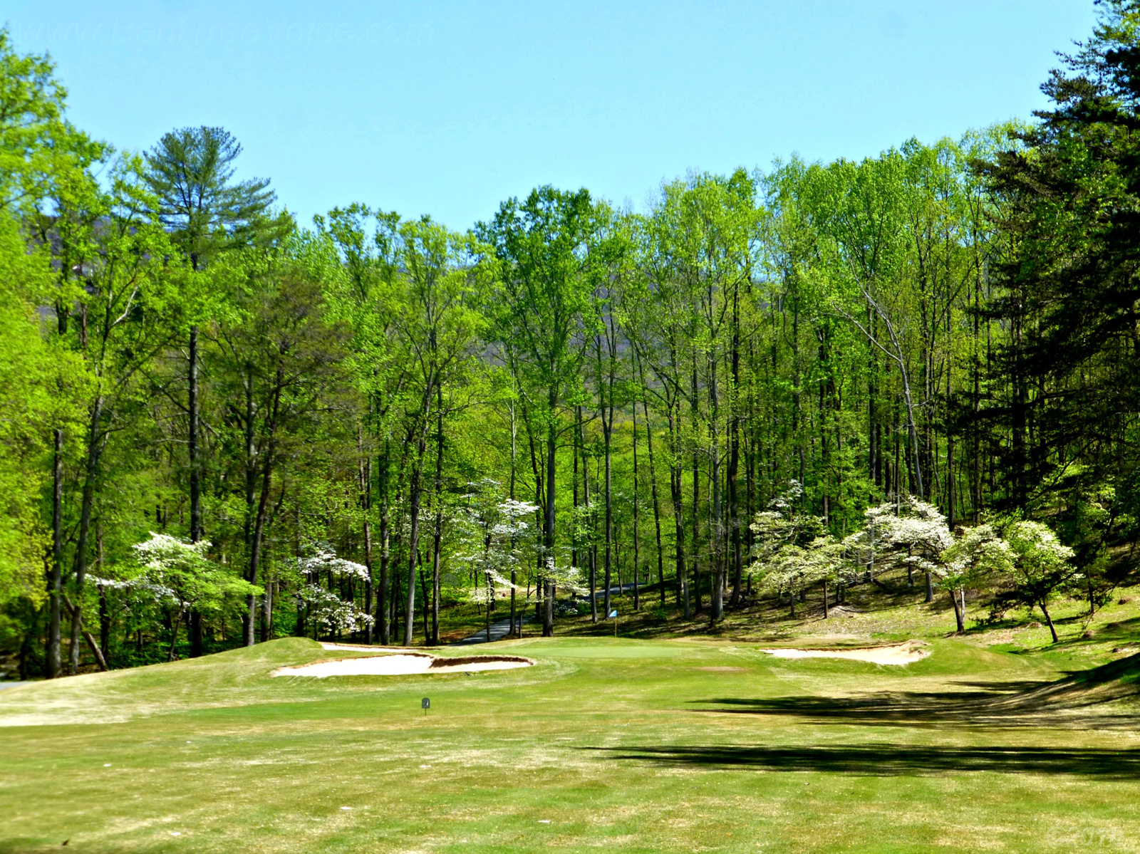 April 20, 2018 - Hole 10, Bent Tree
