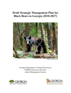 black bear plan cover page