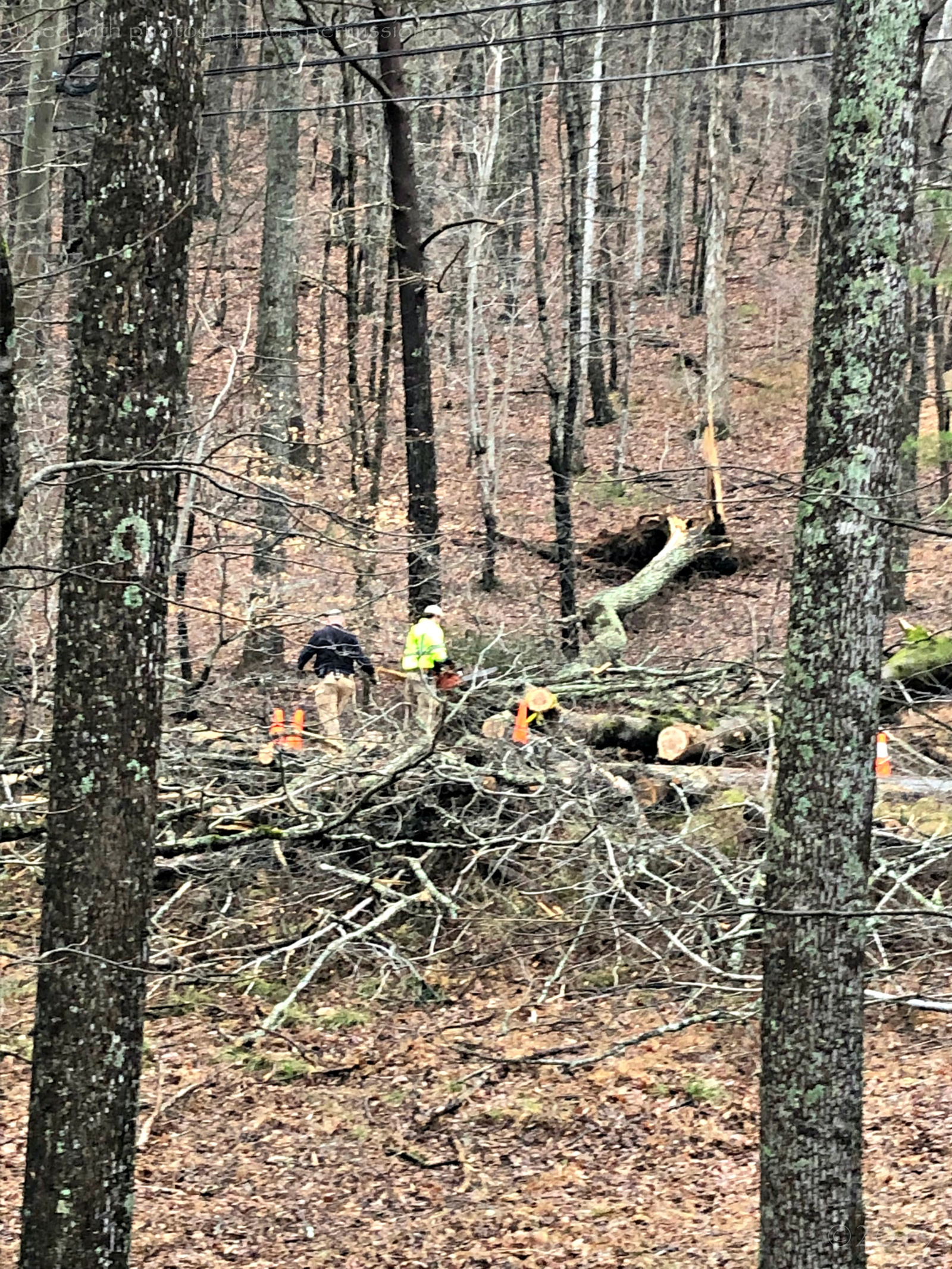 January 13, 2019 - Public Safety at work clearing Little Pine Mountain Rd