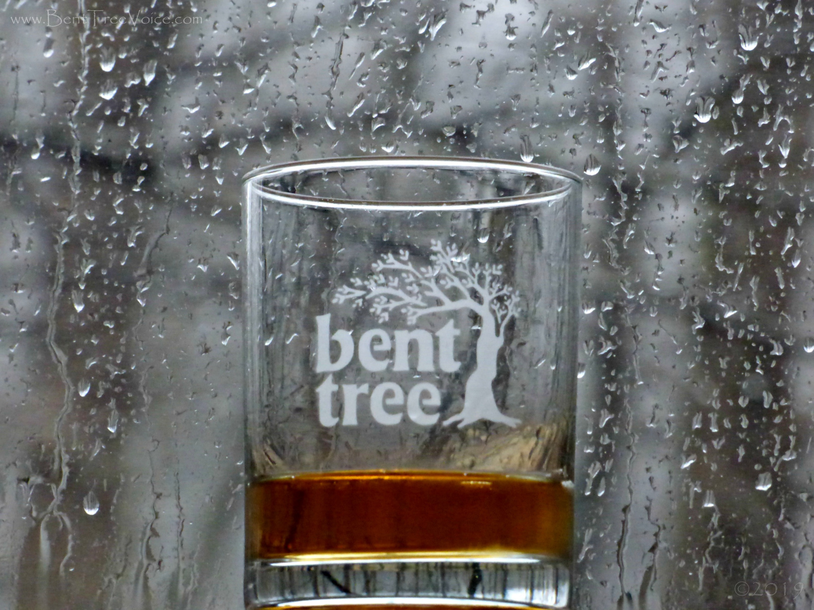 February 19, 2019 - a rainy day in Bent Tree