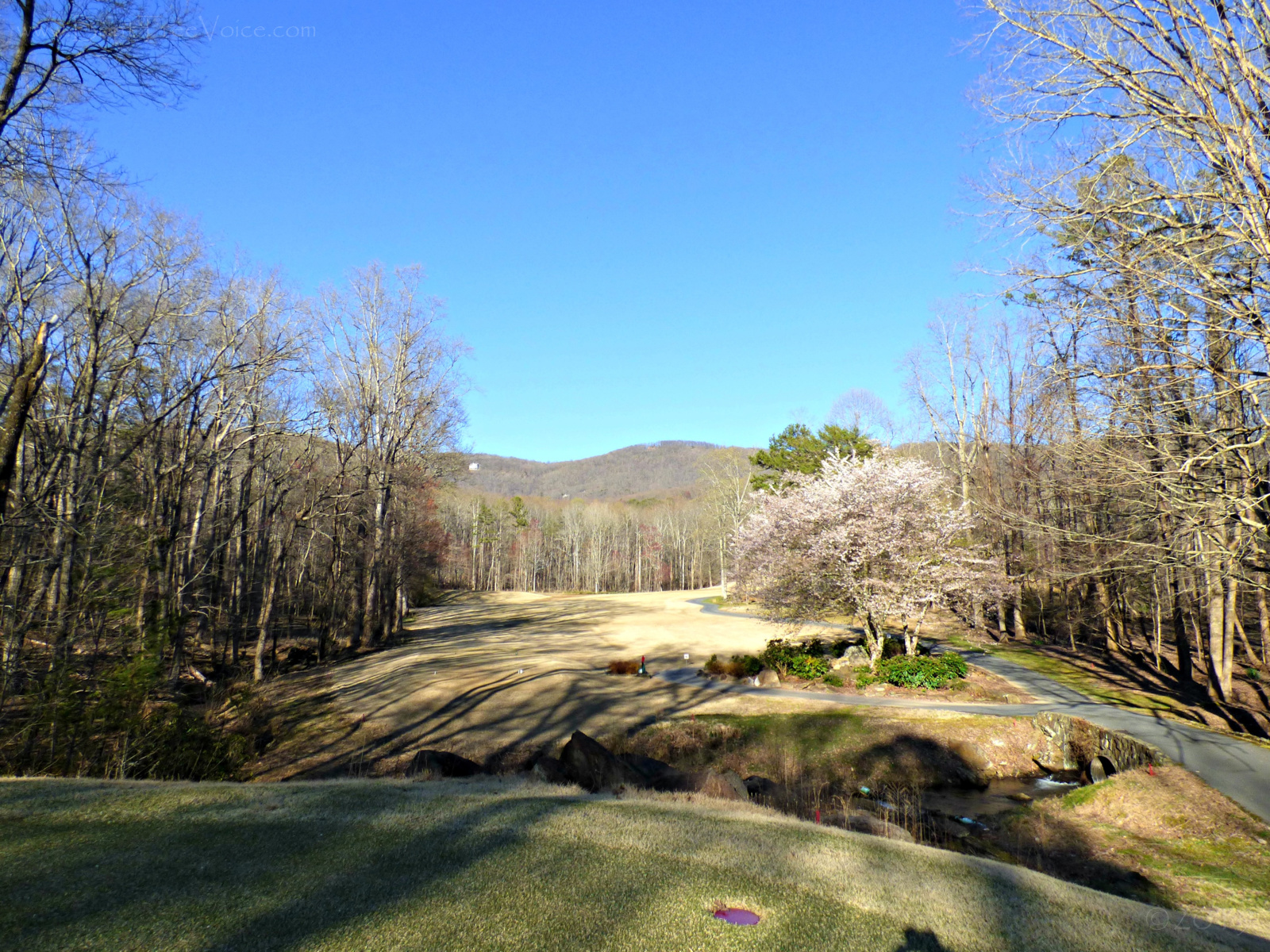 March 22, 2019 - Bent Tree's Hole 11