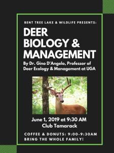 deer poster 3