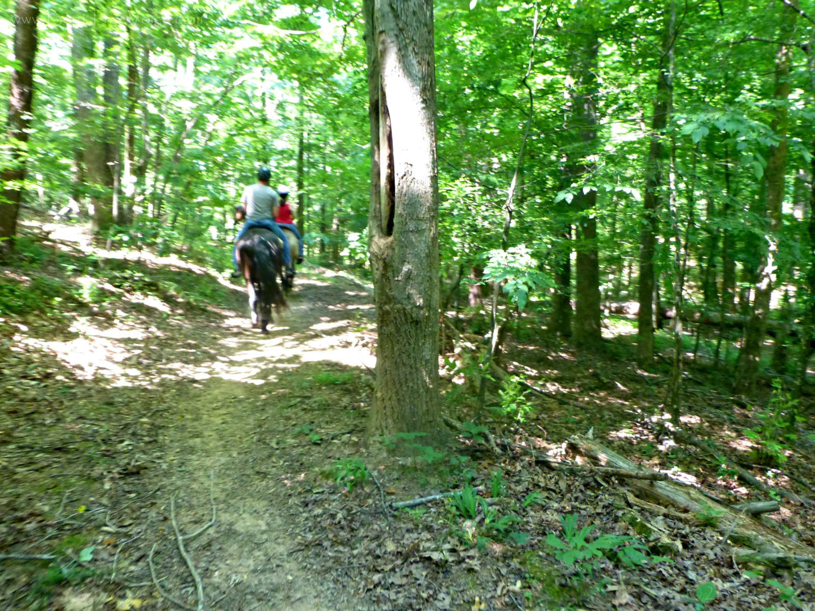 May 26, 2019 - riding the trails in Bent Tree