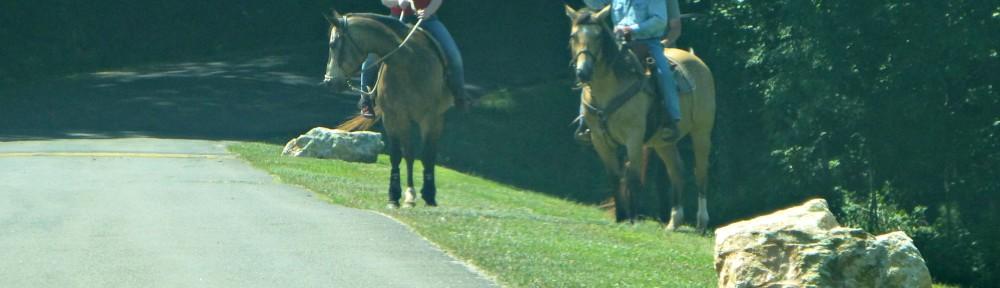 cropped-2019-0526-horses-header.jpg