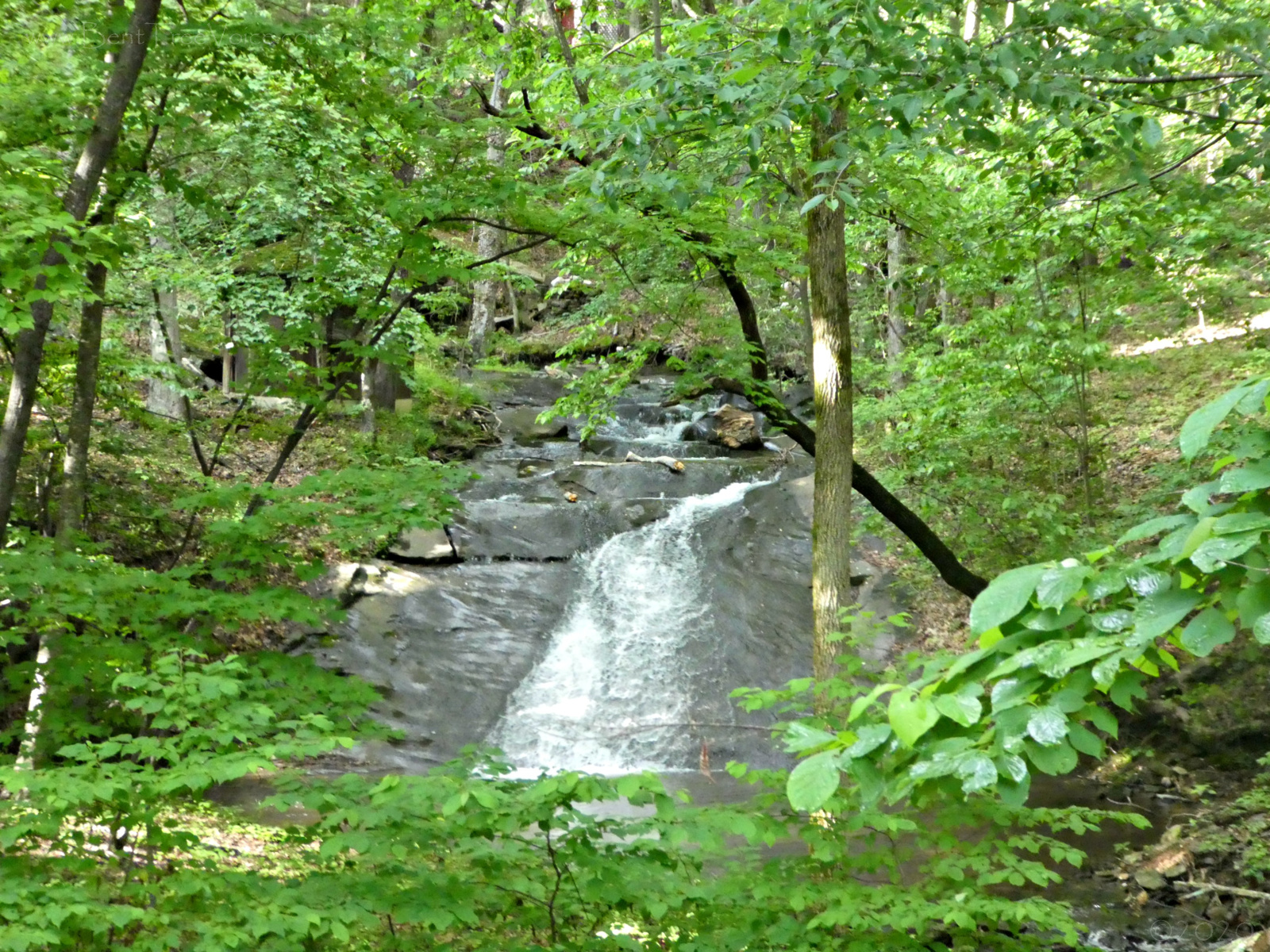 May 23, 2020 - the waterfall at 926 Tamarack Dr. as seen from the Bent Tree Golf Course