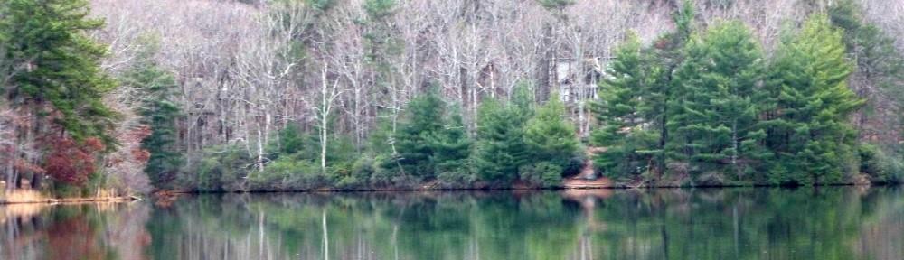 cropped-2013-0105-lake-tamarack