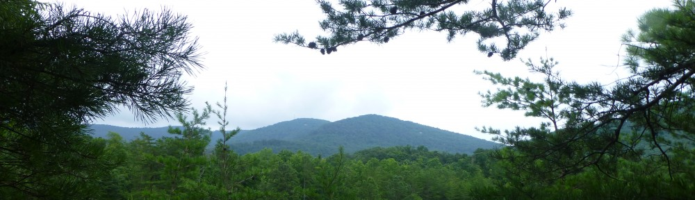 cropped-2013-07-quarryview