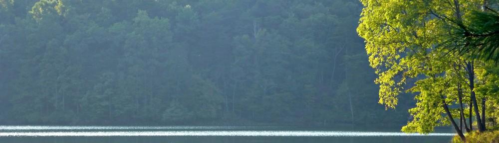 cropped-2013-1003-lake-tamarack-from-cove