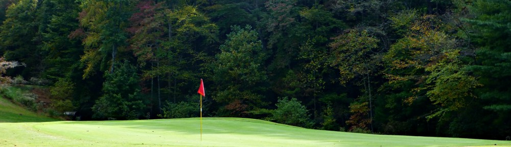 cropped-2013-1022-hole-3-green