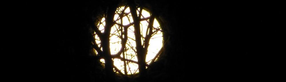 cropped-2013-1118-full-beaver-moon