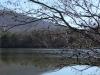2015-0110-lake-tamarack-from-spillway.jpg