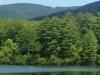 2011-0816-lake-tamarack