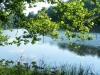 2012-0619-lake-tamarack-header